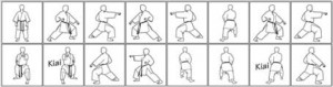 karate puzzle