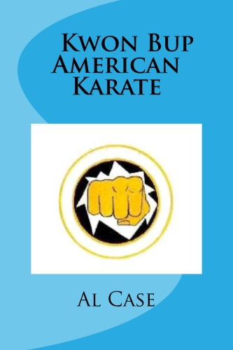 american karate power punching