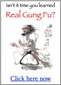 gung fu book