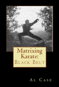 expert level in black belt