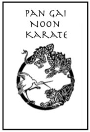 pan gai noon karate kung fu instruction